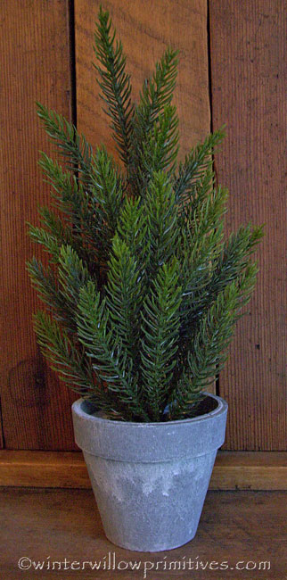 Potted Tahoe Pine Topiary